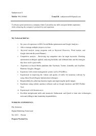 sankareswari s resume seo experts chennai seo service chennai