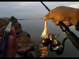 ULtralight <b>fishing</b>: Octopus <b>squid skirt</b> lure in action - YouTube