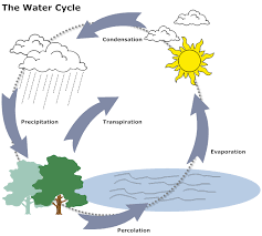 water cycle diagramexample image  water cycle diagram