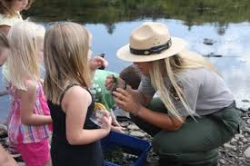 Children learning about river ecology. National Park Service
