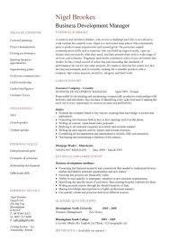 Business Development Manager Resume Resume Sampl Business       business development resume sample