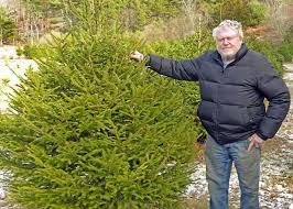 Real <b>Christmas trees</b> are a <b>hot</b> commodity this year | Covid-19 ...