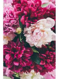 репродукция в раме розы в кувшинчике 400х300мм бумага мдф