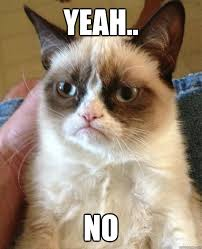 Grumpy Cat No Meme - grumpy cat saying no meme with grumpy cat no ... via Relatably.com