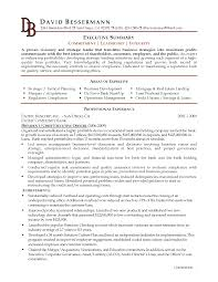 help synopsis objective for resume