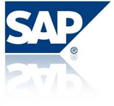 what to expect from a career as an sap project manager