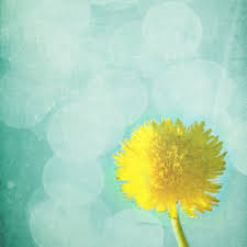 Image result for yellow art in garden