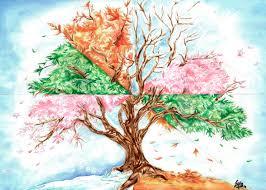 Resultado de imagem para ciclo da árvore