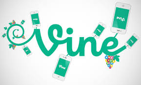 Image result for vine