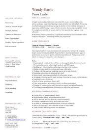 Resume Sample For Team Leader     BNZY