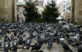 Le Pigeon,ami ou ennemi ? Images?q=tbn:ANd9GcTNPT4ELoKdK6VdbTmd8WdxtyHaSirWjtyam7iV1ROk1UeEdQ8w