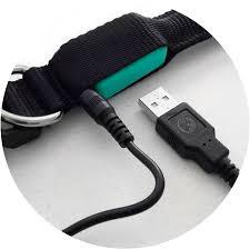 green gremlin poochlight light up flashing dog collar squeaker green gremlin poochlight usb rechargable dog collar