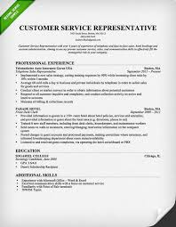 Customer Service Resume Objective Examples  resume objective
