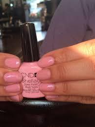 blush shellac