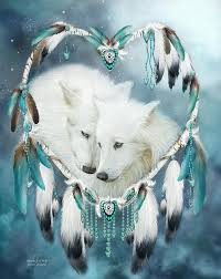 Image result for wolves images pictures