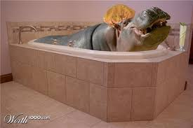 Chop A <b>Hippo</b> | <b>Hippo</b>, Cute <b>hippo</b>, <b>Hippopotamus</b>