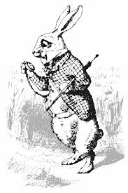 Image result for images: white rabbit with watch
