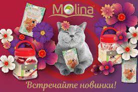 Новинки <b>лакомств</b> суперпремиум-класса для собак и кошек от ...