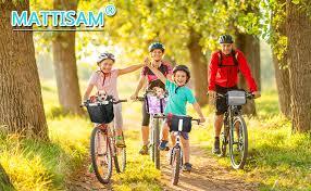 MATTISAM Bike Handlebar Bag, Bike Basket with ... - Amazon.com