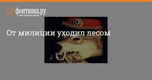 От милиции уходил лесом - Происшествия - Новости Санкт ...