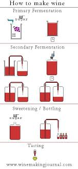 wine making diagram   wine making journal  oct fun wine making diagram