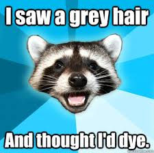 I saw a grey hair And thought I'd dye. - Lame Pun Coon - quickmeme via Relatably.com