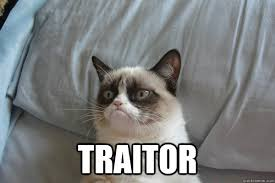 traitor - Grumpy Cat 2 - quickmeme via Relatably.com