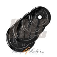 """<b>Диск обрезиненный</b> """"<b>Титан</b>"""" (d <b>31</b> мм 1,25 кг)"""