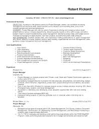 finance assistant CV sample  strong ledger skills  cv writing  job description  resume Brefash