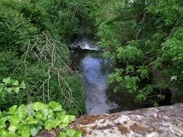 Waldangelbach