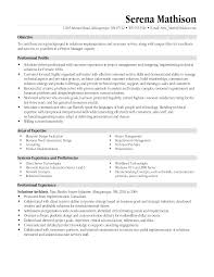 resume objective it manager cipanewsletter project manager resumes examples experience resumes