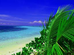 「海 写真 フリー」の画像検索結果