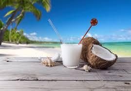 Картинки по запросу фото кокос пальма