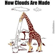Why Does A Giraffe Have Such A Long Neck? Because Its Head Is So ... via Relatably.com