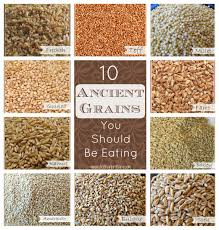 10 Ancient Grains You Should Be Eating - Your Choice Nutrition