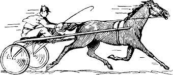"""Résultat de recherche d'images pour """"les photos des chevaux de courses"""""""