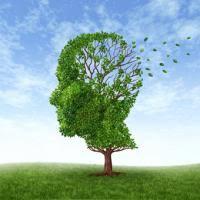 Resultado de imagen de neurologo