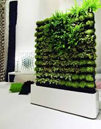 living wall planter kit contemporary indoor interior living wall  fbacadafcbedd interior living wall
