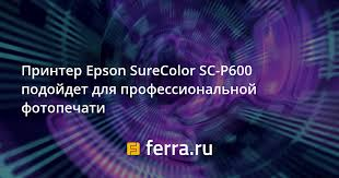<b>Принтер Epson SureColor SC</b>-<b>P600</b> подойдет для ...
