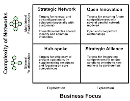 renewal through co creation in business networks tim review image 11 hyotylainen1 png