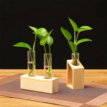 Glass <b>Plant</b> Vase Wood reviews – Online shopping and reviews for ...