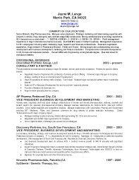 sample resume summary of skills experience resumes resume summary of skills examples