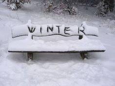 <b>Украшаем елку</b> во дворе и на улице | фото в 2019 г. | Зима ...