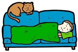 Bildresultat för gratis tecknade bilder på katter