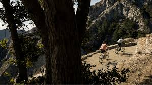 Checkpoint   Trek Bikes
