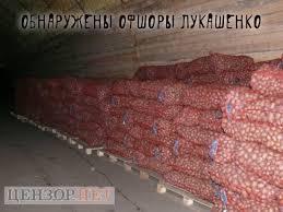 Между Киевом и Минском нет неразрешенных проблем, – глава МИД Беларуси - Цензор.НЕТ 8582
