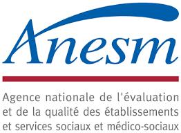 Logo ANESM sans texte