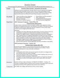 free resumes scenic insurance appraiser resume example comely    insurance adjuster resume sample insurance appraiser