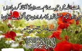 spring season essay urdu spring season poem  urdu      spring season essay urdu spring season poem