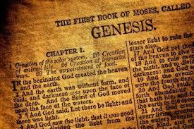 Risultati immagini per Immagini la Bibbia